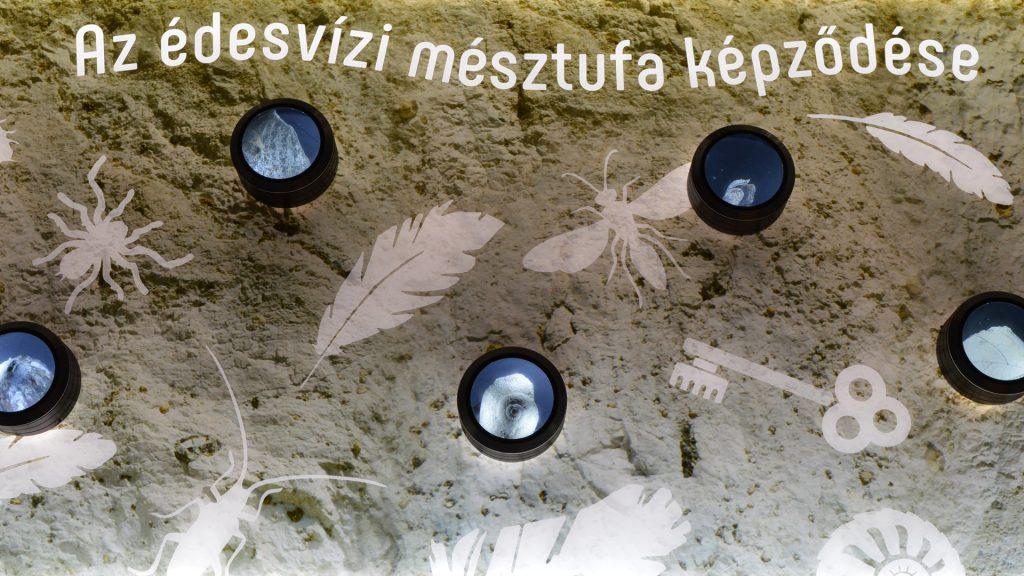Komlós_Attila_20180403_Tettyei_Mésztufa-barlang_DSC_8232