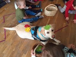 segítő kutyák